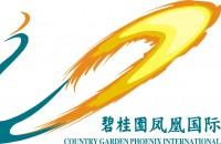 碧桂园凤凰国际酒店皖中区域