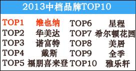 2013年中档酒店品牌TOP10