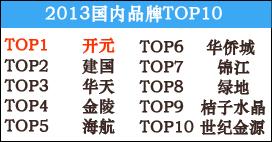 2013年国内酒店品牌TOP10