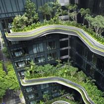 节能减排100招 助力打造绿色环保饭店