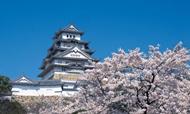 日本酒店行业分析报告:酒店入住率8成以上