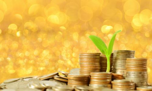 资本背景下 如何做好景区投资?