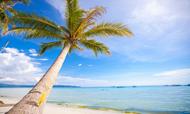 出境海岛游用户消费行为分析报告