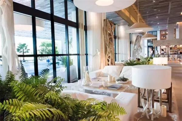 "1、1 Hotels 1 Hotels in Miami South Beach  这个品牌其实是由喜达屋资本集团(Starwood Capital Group)旗下的SH Group酒店管理公司运营管理的。  先科普一下喜达屋酒店及度假村和喜达屋资本集团的关系,后者隶属于前者。  再来说一下SH Group,这个酒店管理公司还管理着2014年开业的纽约Baccarat 酒店,2015年在摩洛哥开业的Rabat酒店。  概念 1 Hotels主打""有机、健康、生态""理念。"