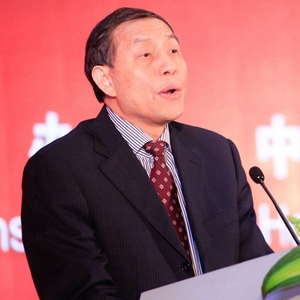 重庆市商务委员会副主任    陈国华