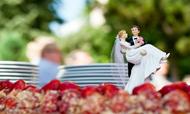 2016财年中国婚庆喜宴市场年度报告
