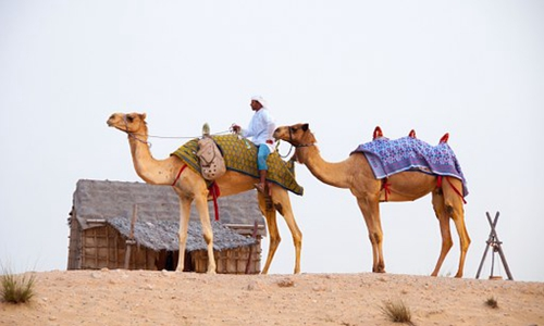 旅行社:一带一路建设的实践者和受益者